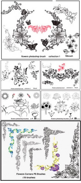 The decorative brush collection of the new high resolution vector flowers lace pattern PS