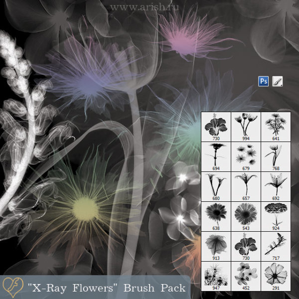 X ray fluoroscopy the the flowers special effects PS the brush