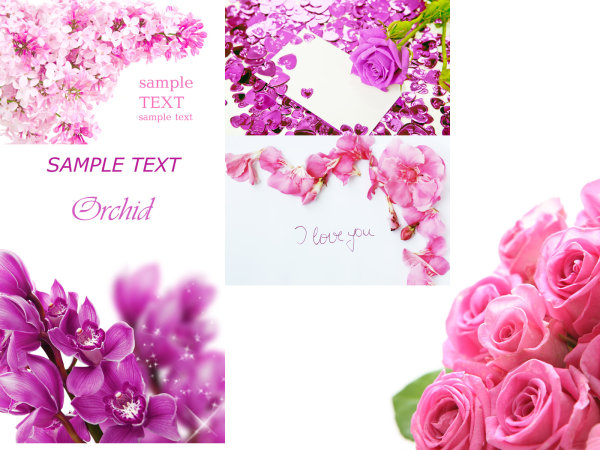 Flowers card template HD picture