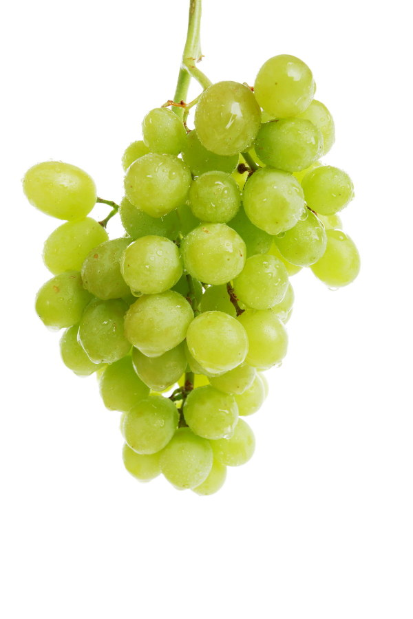 Grape HD pictures  2