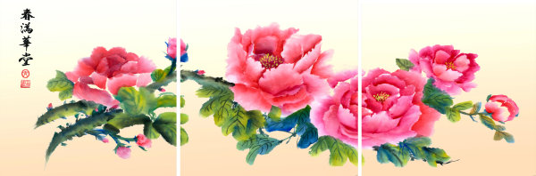 Peony HQ Pictures