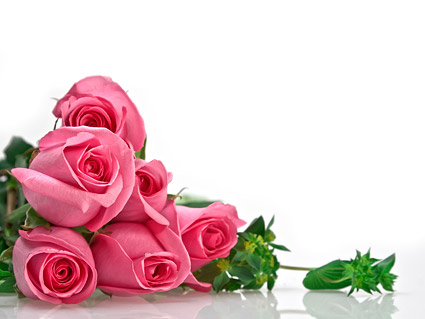 Pink roses bouquet Images