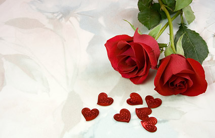Two red roses and heart shaped picture material