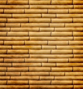 Dry bamboo Background Images