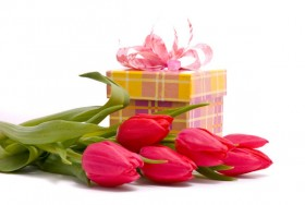 Flowers and gift HD Images 04