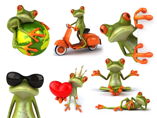 HD picture frog