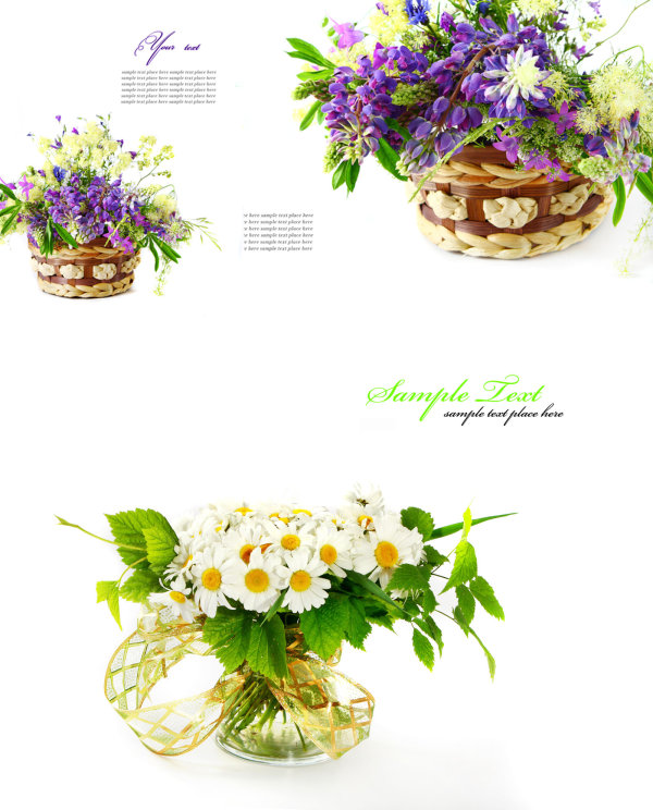 High quality pictures of the beautiful flowers background pattern high quality pictures  2
