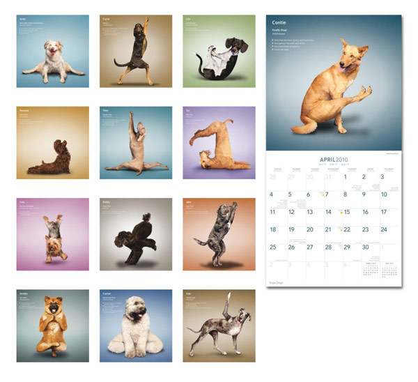 YogaDogs2010 calendar with map HD picture