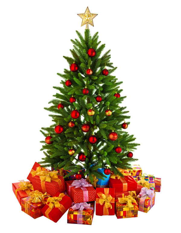 Beautiful Christmas tree 01   HD Images