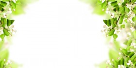 Exquisite banner06 HD Images