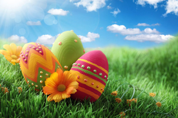 HD Eggs wallpaper 02 HD picture