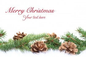 High quality pictures of the beautiful Christmas design elements  69   HD Pictures