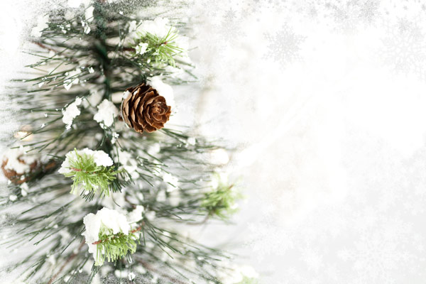 kind Christmas Background 2   HD Pictures