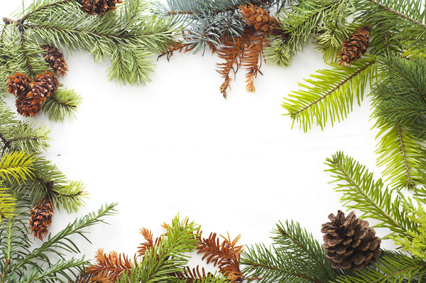 Christmas ornaments border 6   HD Pictures