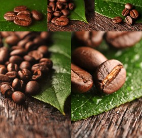 Coffee beans   high definition picture