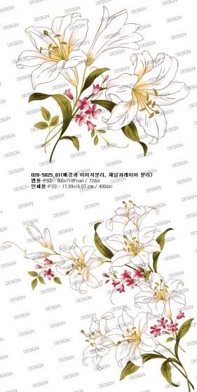 Artcity hand painted lily psd layered material