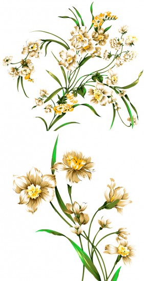 Beautiful hand drawn style daffodils PSD layered material