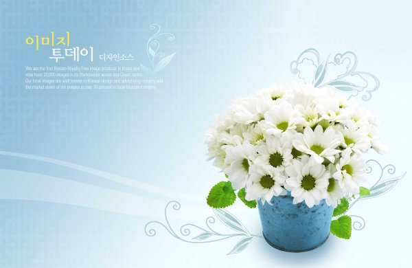 Flowers background PSD layered material  10