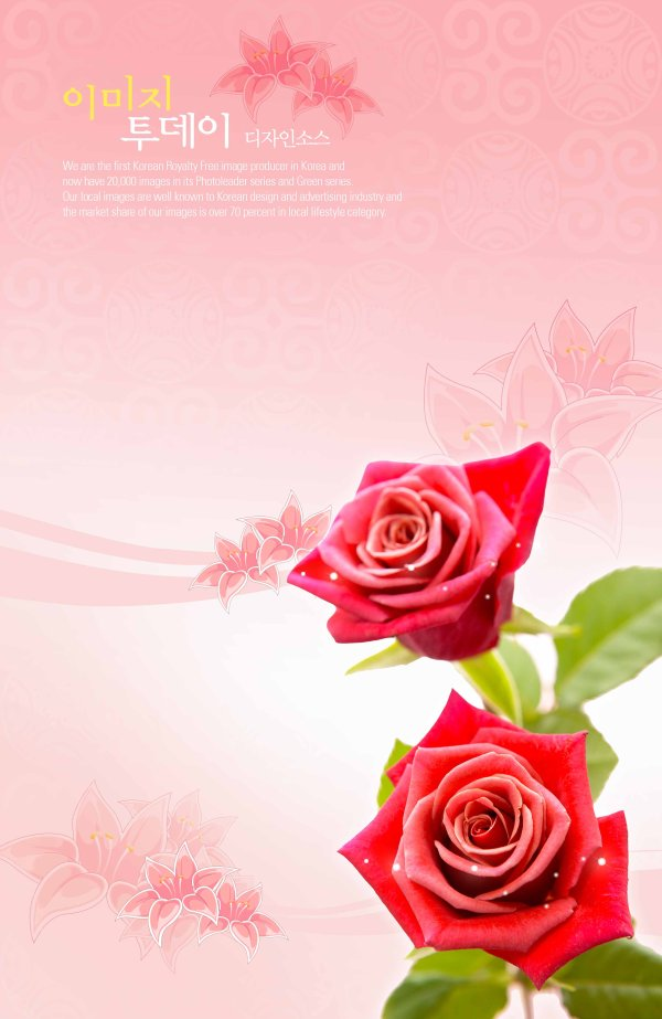 Flowers background PSD layered material  4