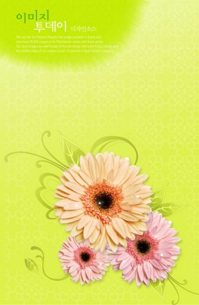 Flowers background PSD layered material  8
