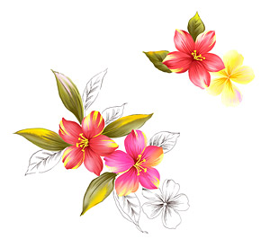 Hand painted flowers layered psd material  8