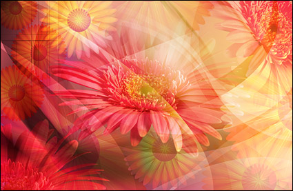 Oversized clear flower theme layered psd 4