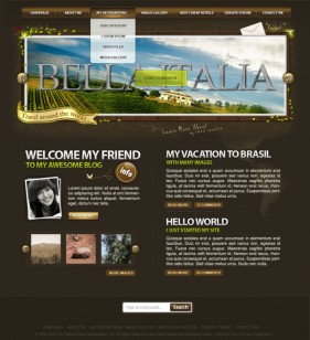 Psd format wordpress theme templates