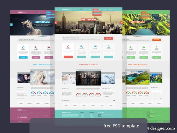 Concise fashion PSD Website Templates