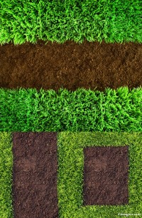 Green grass HD pictures