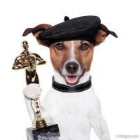 Lift the trophy dog HD pictures