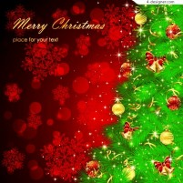 Gorgeous Christmas decoration vector material