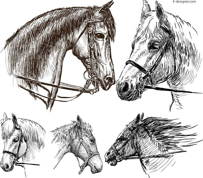 5 hand painted horse vector materials