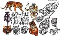 A variety of lifelike tiger painting vector materials