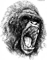 Angry gorilla sketch vector material