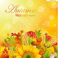 Beautiful autumn plant background vector material