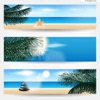 Beautiful beach banner vector material