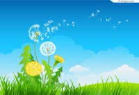 Beautiful dandelion vector material