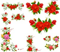 Beautiful rose frame vector material