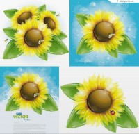 Beautiful sunflower and bees vector material