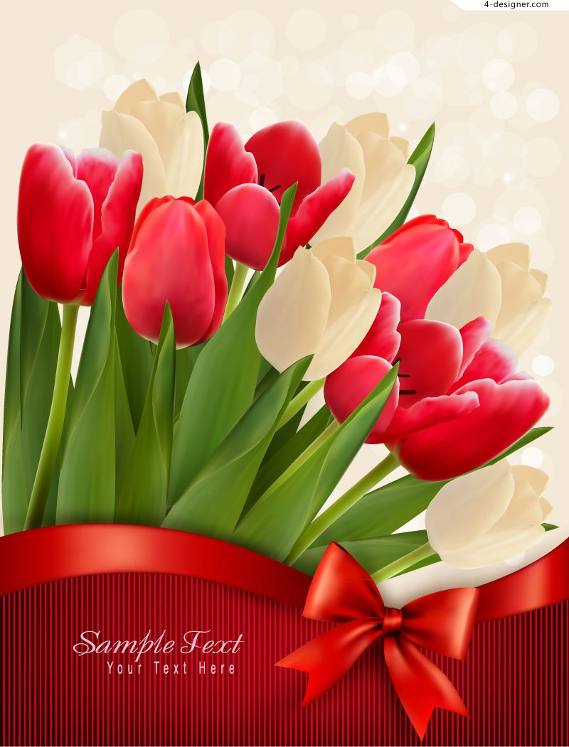 Beautiful tulips cards vector material