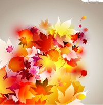 Colorful autumn leaves background vector material