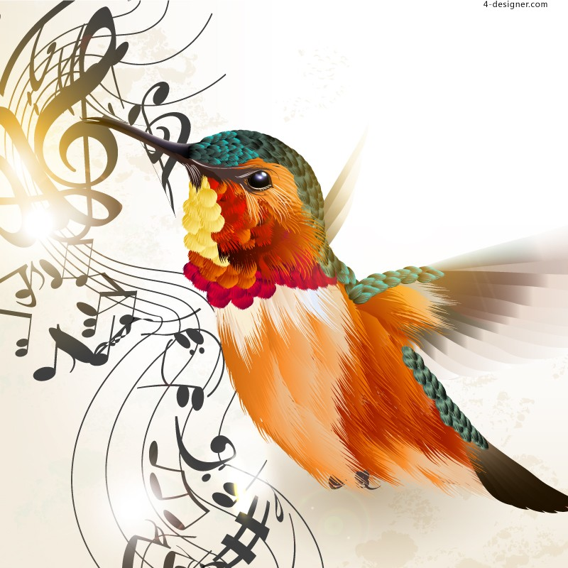 Delicate hummingbird notes background vector material