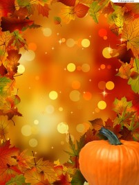 Exquisite pumpkin and maple leaf background vector material