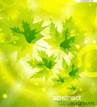 Fantasy Maple background vector material