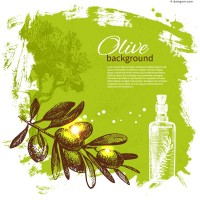 Fresh olive branch vector background material