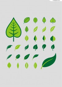 Fresh painted leaves vector material