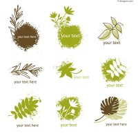 Fresh plant icon vector material