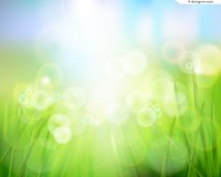 Green grass and dew vector material