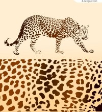 Realistic leopard and leopard vector material