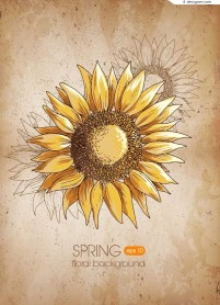 Retro spring sunflower background vector material